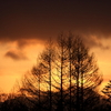 雪国の夕焼け