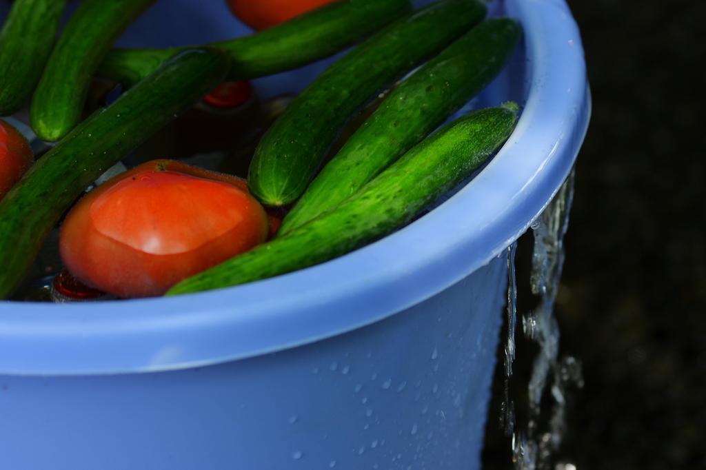 冷やし野菜