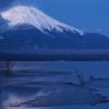 湖畔の夜明け