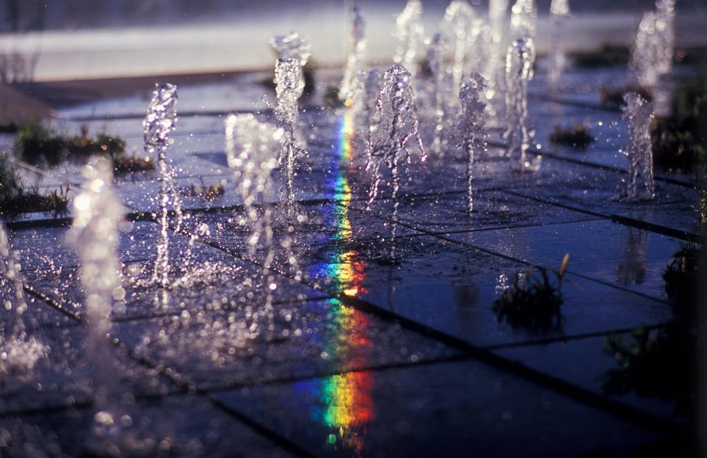 水踊る午後