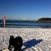 雪の逗子海岸