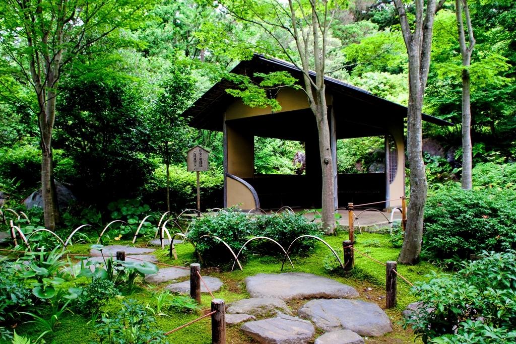 日本庭園3