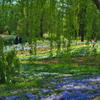 芝桜を背景に-2