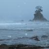 雪の雨晴海岸