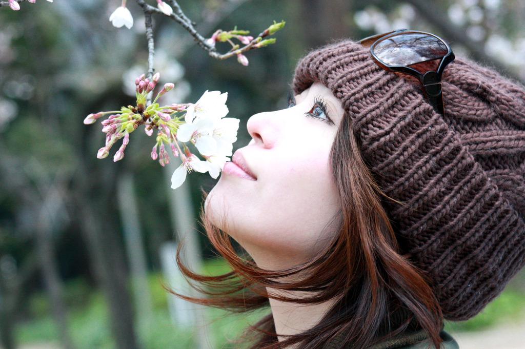 桜と kiss