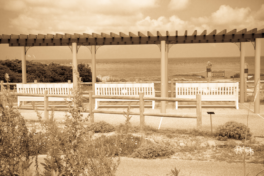 海を眺めるベンチ