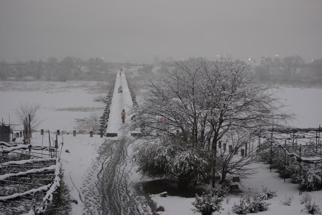 京都流れ橋^と^雪景気