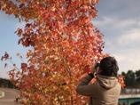 紅葉とカメラ小僧。