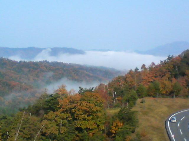 峠からの眺め 2007秋