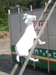 梯子に山羊?? 20080927