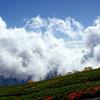 湧き立つ雲の下