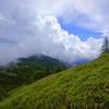 緑濃く雲が湧く