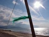 光りの中の風
