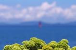 赤灯台を眺めて1