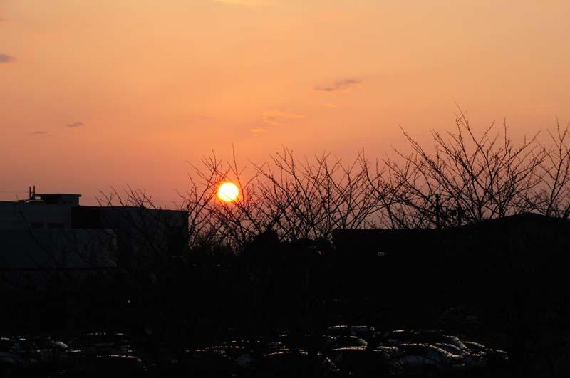 河川敷から見た夕日