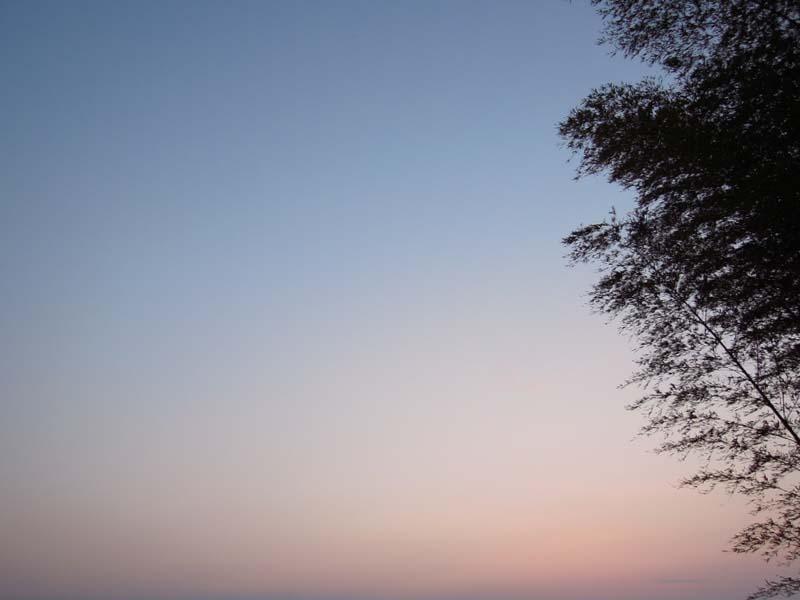 初春の夕暮れ