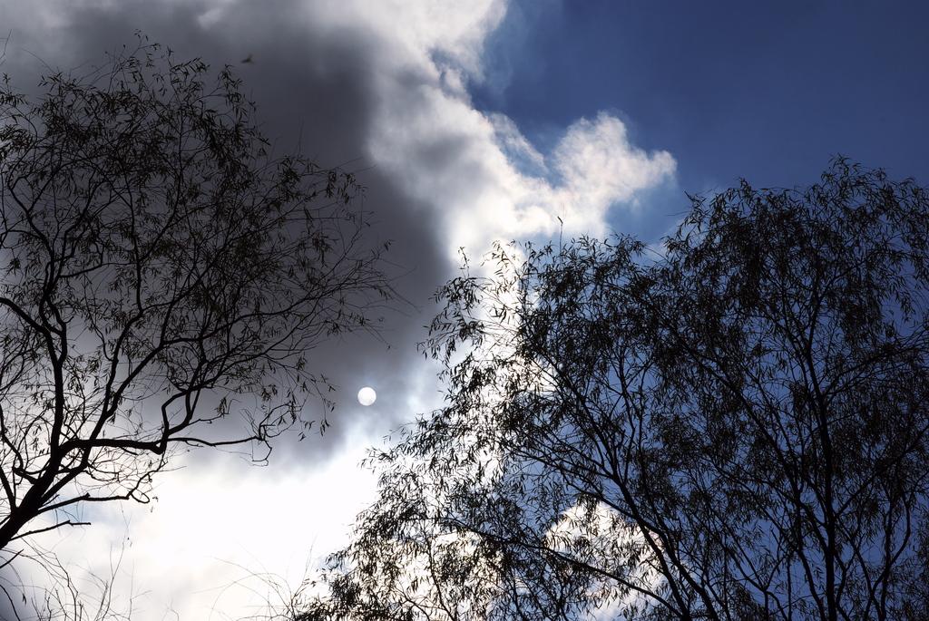 小さな太陽