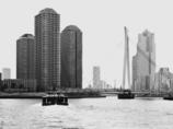 City Cruise