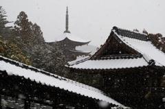 雪化粧 瑠璃光寺