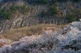 朝日差し込む屏風岩