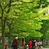 昭和の残像 「紙芝居」