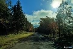 雲海につづく道