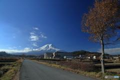 富士山へ向かう道