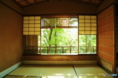 日陰の部屋
