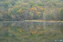 映り込みの秋