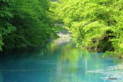 不思議な水の色