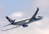 シンガポール航空の翼