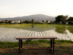 静かなベンチ