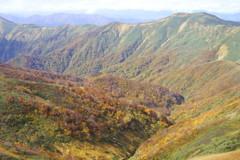 谷川山域の紅葉