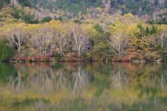 湯の湖の秋