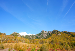 瑞牆山の紅葉