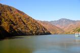 広瀬ダムからの紅葉