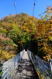 橋の向こうは紅葉
