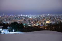 札幌冬夜景~旭山記念公園~2