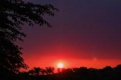 肉眼で見たときは太陽が紅色をしてました