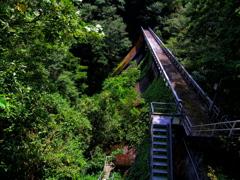 大峠ダム・森の深部へ