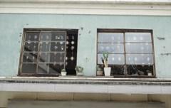 千葉ミニ散歩・屋根の上のサボテン