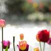春の光あふれて