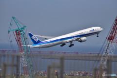 夏の羽田空港便り ⑧