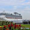 花のある港の風景 空席あります