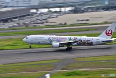 夏の羽田空港便り ⑨