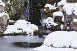 厳冬の契心園