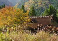 RICOH IMAGING PENTAX K-3 IIで撮影した(茅葺の秋)の写真(画像)