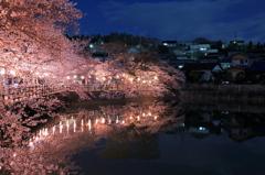 夜桜の見れる家