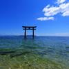 近江の厳島Ⅱ