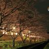 妄想の赤い月